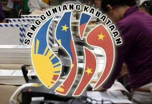 Barangay and SK Elections 2013